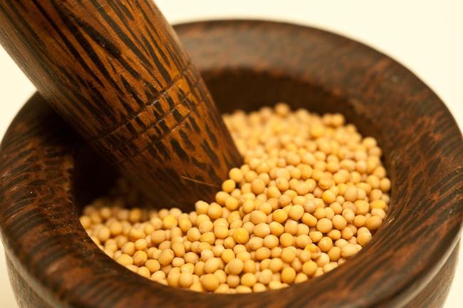 Ayurveda Lifestyle Yellow Mustard Seed