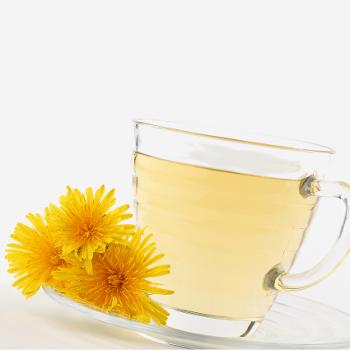 Dandelion Cardamom Tea Ayurveda Recipe