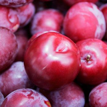 15 Manfaat diet buah plum, fakta nutrisi dan efek sampingnya.