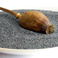 Poppy Seed Ayurveda Medicinal Properties