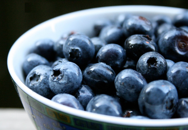 Blueberry Ayurveda Medicinal Properties