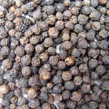 Black Pepper Ayurveda Medicinal Properties