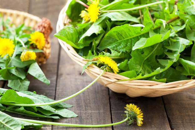 Dandelion Greens with Lemon & Mint Ayurveda Recipe