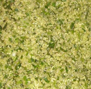 Quinoa with Mint, Cilantro & Red Onion