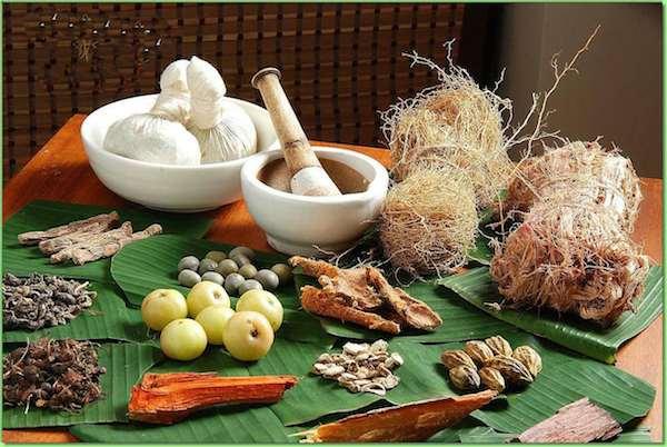 Ayurveda Lifestyle Digestive Formula Herb Sampler Kit