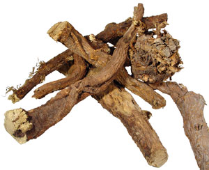 Ayurveda Lifestyle Licorice Root