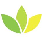 Ayurveda Lifestyle Candida Cleanse Tea