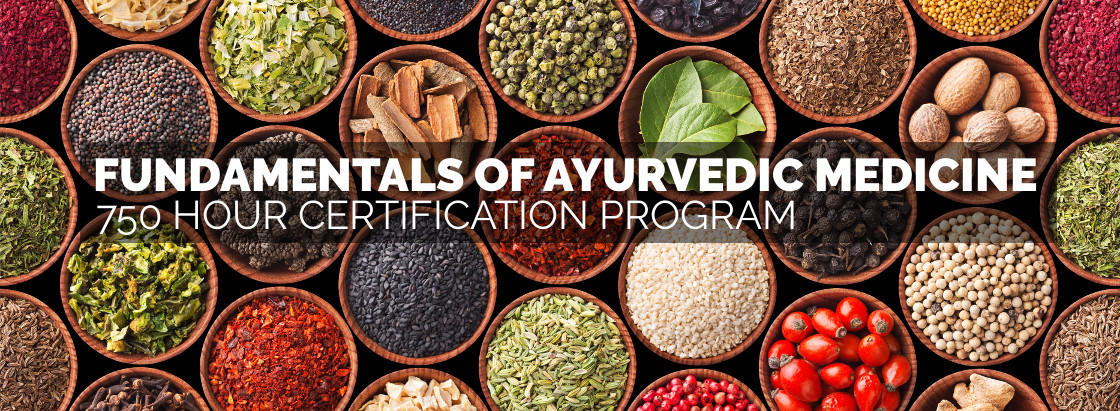 Fundamentals of Ayurvedic Medicine - 750 Hour Certification Program