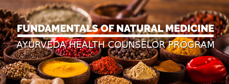Fundamentals of Natural Healing - Ayurveda Health Counselor 750 Hour Certification